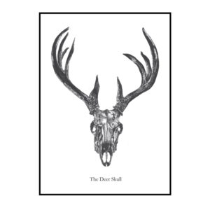 The Deer Skull PLAKAT plakat Creative Dot Mathilde Olsen