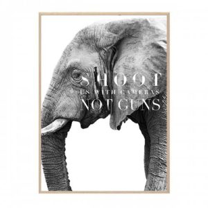 ELEPHANT PLAKAT HANG IT UP CREATIVE DOT